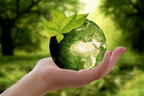 Unserer Umwelt zuliebe – Werfen Sie Ihr Leergut nicht weg